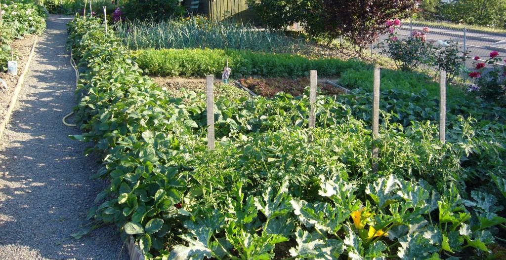 jardin ouvriers 1